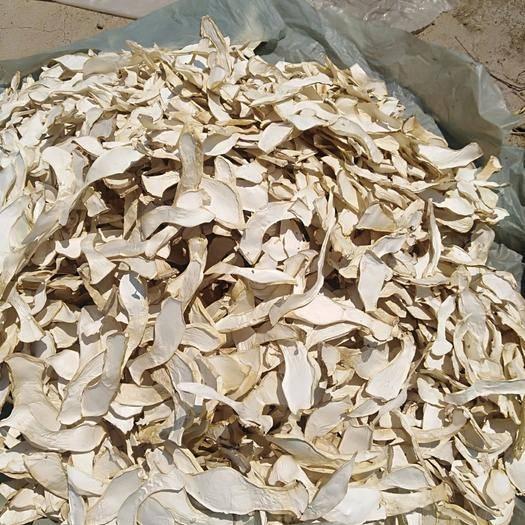 河北省承德市平泉市干杏鲍菇 干杏鲍菇 一级 2cm~3cm