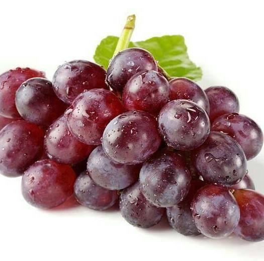 内黄县 大量供应葡萄