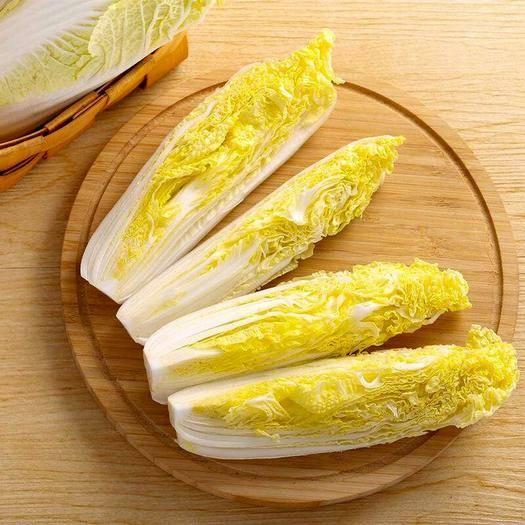 宜春樟树市 黄心娃娃菜种子 高产抗病强  耐热耐湿 四季种植 大田专用
