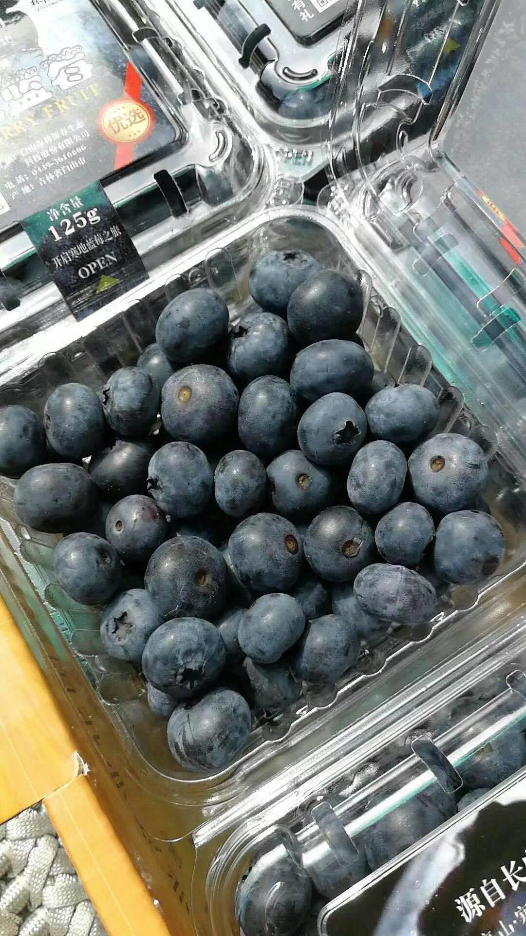 蓝丰蓝莓 【蓝丰、伯克利、美登】*50*吨冻果批量出售