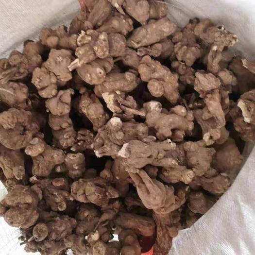 亳州谯城区 合作社大量供应中药材白术各种规格各种价格