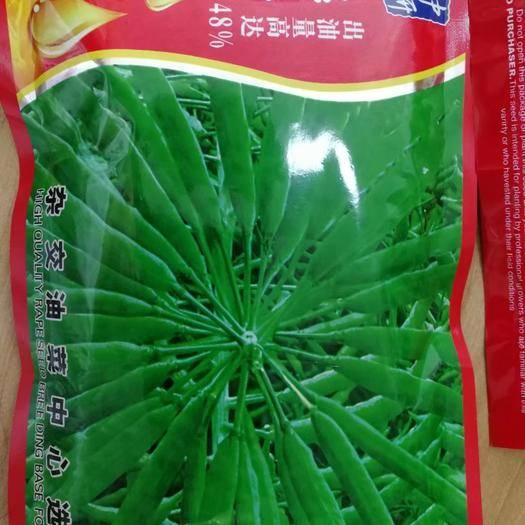 夏邑縣 秦油二號,甘藍型油菜,出油率48%,油菜籽種子