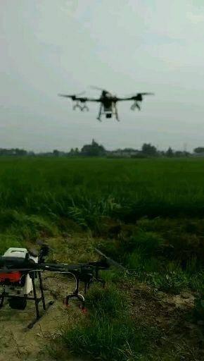 四川省德阳市广汉市无人机农药喷洒 大疆无人机T16