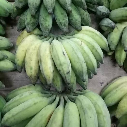 大埔县米蕉 农家米家