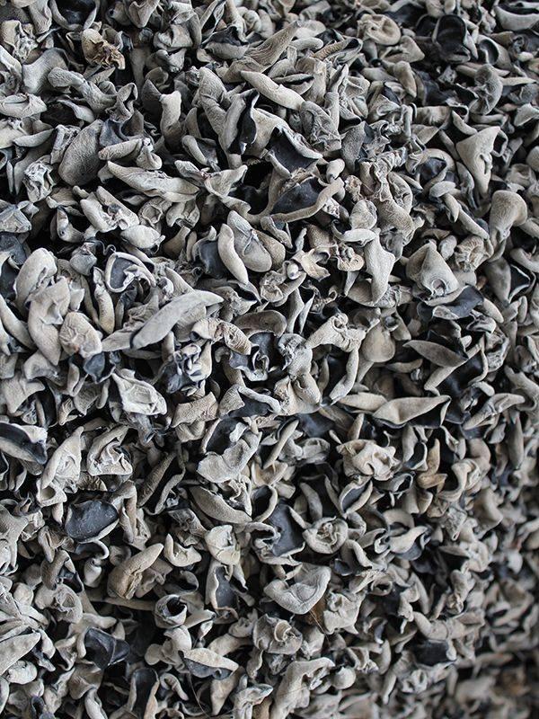 黑龙江木耳500克/袋~包邮 东北小碗耳肉厚 胶原蛋白丰富