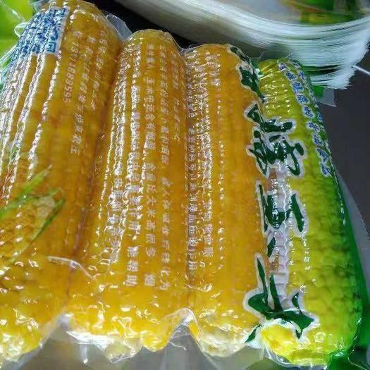 鹤岗 自产纯绿色速冻糯玉米