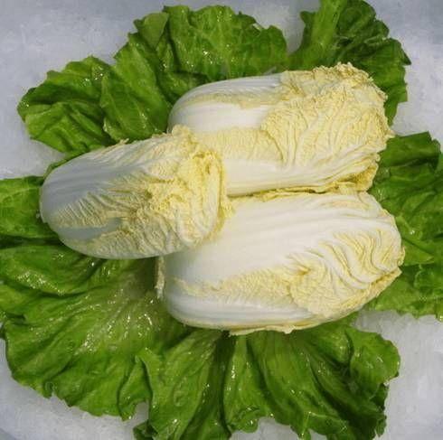 南阳卧龙区 华耐B1102高端娃娃菜种子