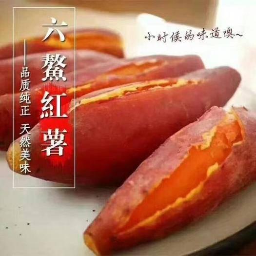 漳州平和县 红蜜薯六鳌地瓜大叶红品种中小果净重3斤5斤装包邮