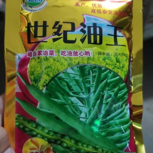 夏邑縣油菜籽種子 世紀油王油菜種子