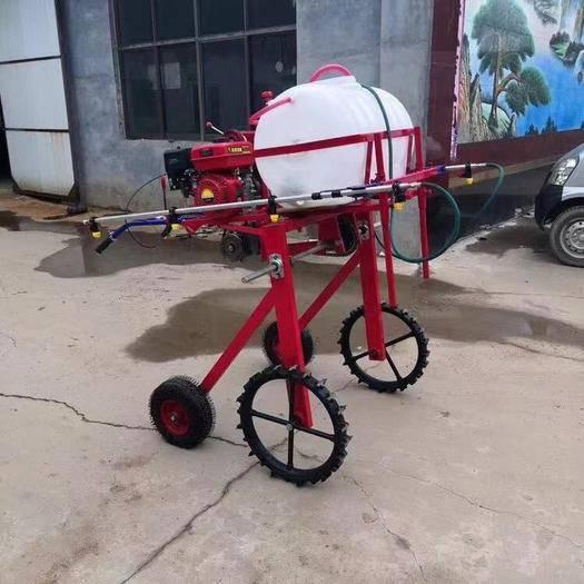 德州禹城市打药车 手推汽油自由式喷雾机,新款玉米棉花大葱打药机喷药机弥雾机