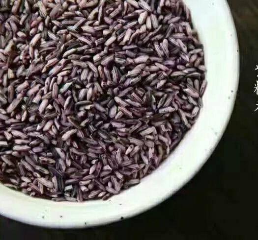 玉溪紅塔區 墨江哈尼梯田生態紫米