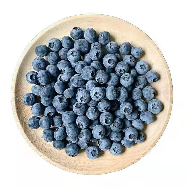 汪家蓝莓500g装