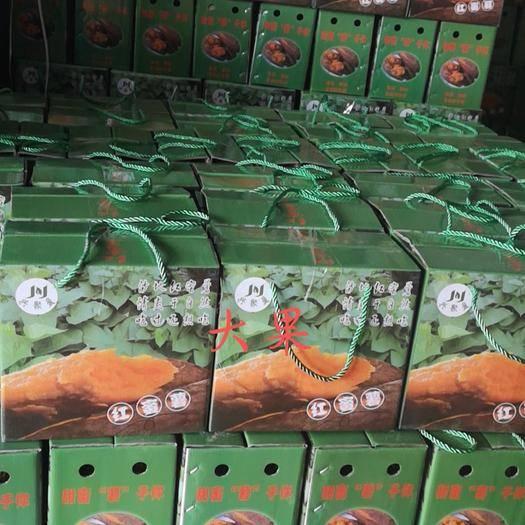 漳州漳浦县西瓜红 六鳌蜜薯大量供应~支持一代发