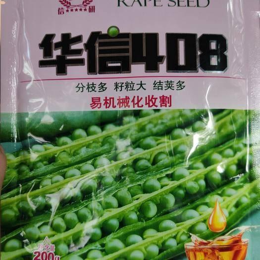 夏邑縣 華信408油菜籽種子