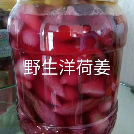 安庆岳西县紫菊芋 腌制洋荷姜