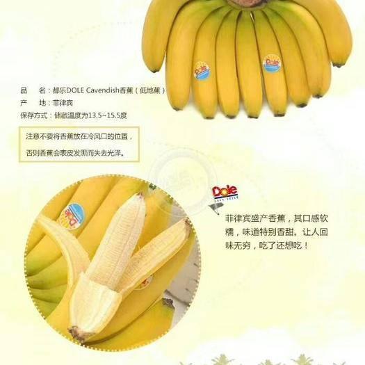 北京 菲律宾香蕉,好国产