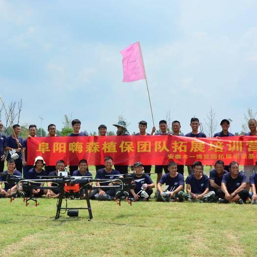 安徽省阜阳市临泉县无人机农药喷洒 无人机打药服务