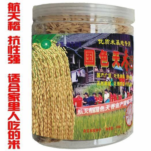 邵阳邵东县 航天稻抗性强优质长粒米香米杂交水稻种子稻谷种子