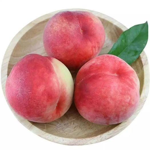 咸阳礼泉县 当季新鲜脆甜桃水蜜桃48小时之内发货5斤包邮