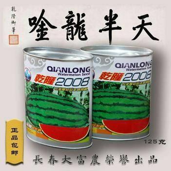 特大巨型西瓜种子乾隆2008金刚巨无霸瓜王特用种原装125