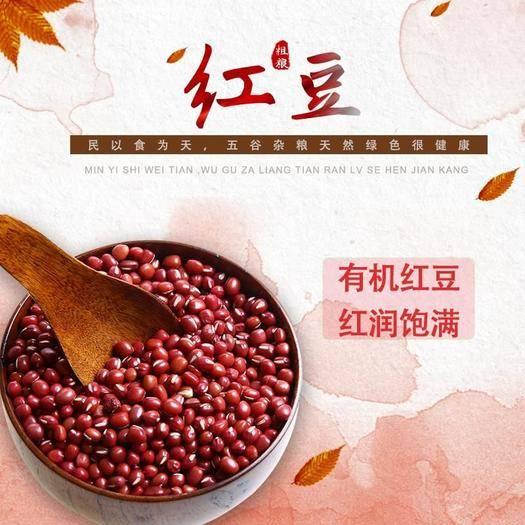 商洛商南縣 顆粒飽滿干無化肥無污染有機紅豆