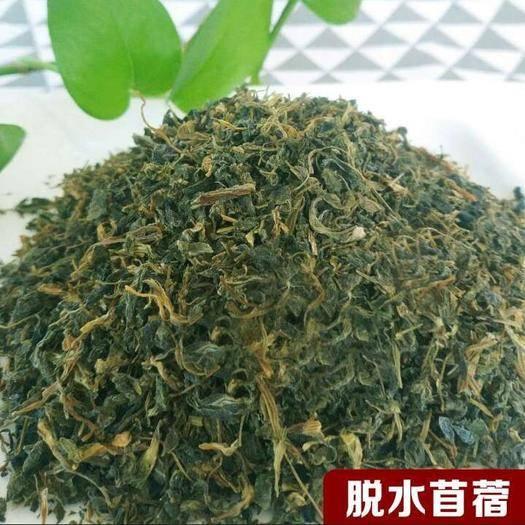 河北省沧州市运河区苜蓿芽 脱水苜蓿,4~5倍泡发率,养生长寿菜,全国常年供应