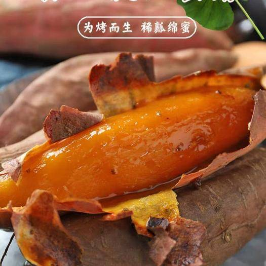 济南历城区烟薯25 混装通货 红皮