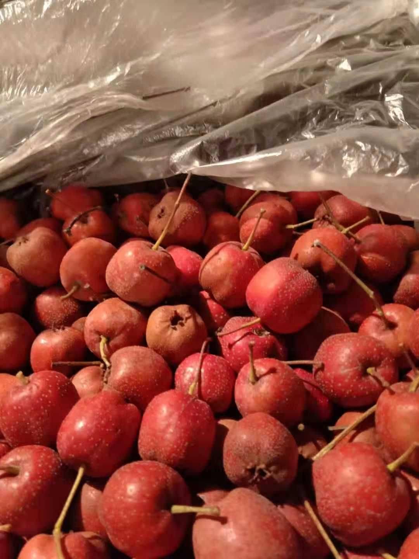大金星山楂 打浆     切片果