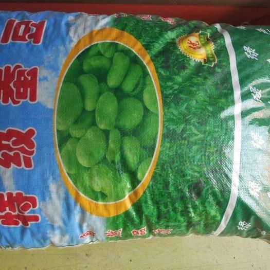 郑州 蚕豆种子