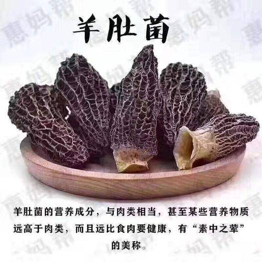 云南省昆明市官渡区蘑菇 云南野生菌