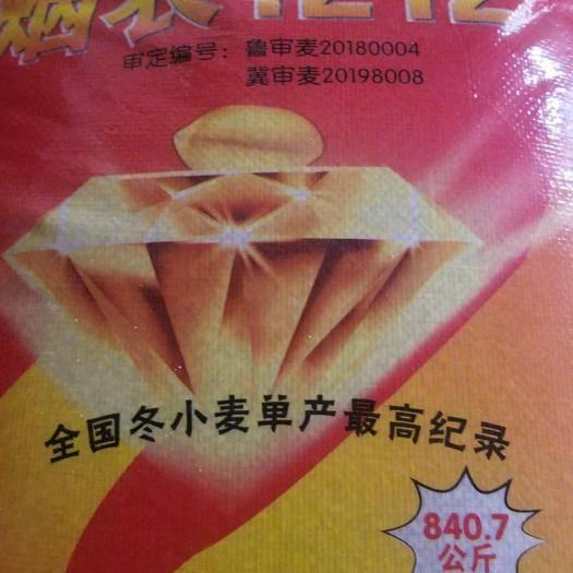 夏津縣 煙農1212.,馬上秋收了,麥種你準備好了嗎,選擇這個品種