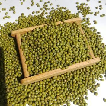 绿豆19年新货农家绿豆一级颗粒饱满绿豆汤一件代发8斤起包邮