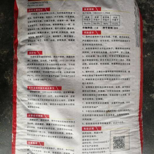 鄭州二七區小麥種子 【精】周麥30