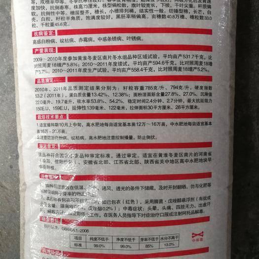 鄭州二七區 中原6號小麥種子