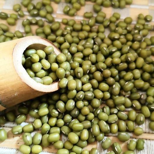 保定 綠豆,非轉基因綠豆,包郵。