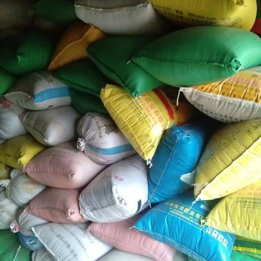 亳州譙城區白芝麻 全部是農戶自己種植,純度%100,無雜質,一手貨,