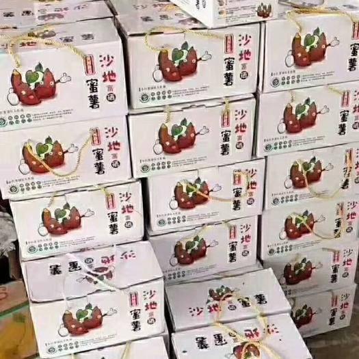 济南历城区蜜薯 3两~6两 红皮