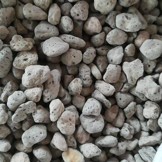 亳州譙城區磁石 中藥材海浮石