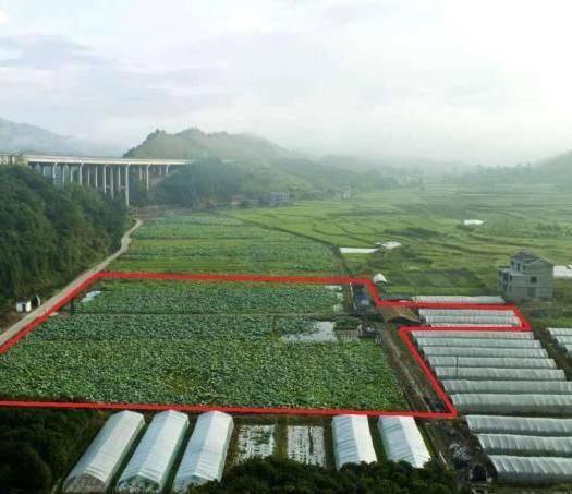 通道侗族自治縣水田 水產繁殖養殖基地,找合伙人。