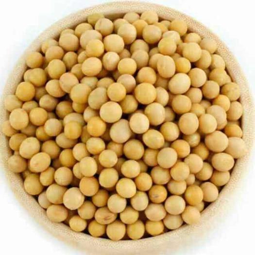 佳木斯富锦市 优质东北大豆,高蛋白大豆,做豆腐,做腐竹,豆浆,都可以。