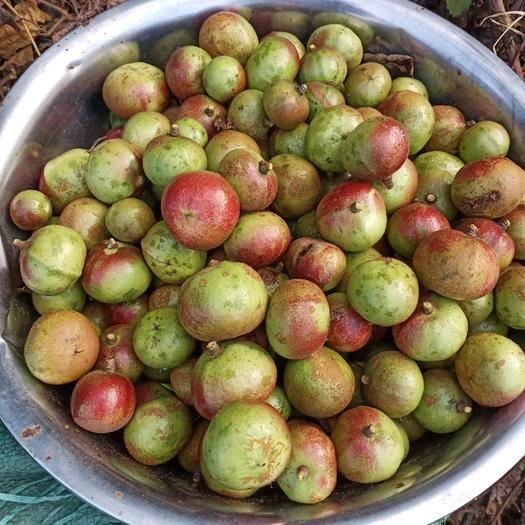 德宏盈江縣白花山茶油 相信大家對于天然茶油都有些了解,茶油在我們農村可以算個寶貝