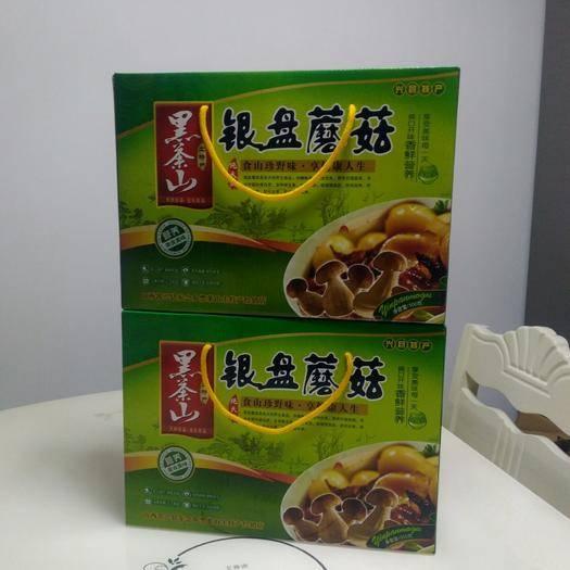 山西省吕梁市兴县 银盘蘑菇