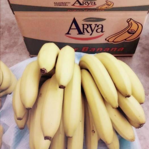 红河县 (可以发货) 云南新鲜香蕉高山香蕉10斤包邮支持一件代发
