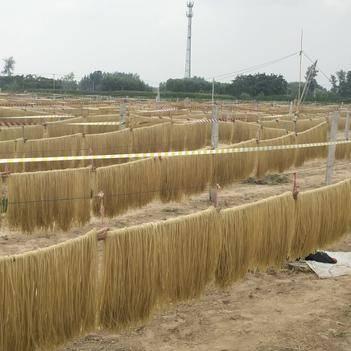 【安徽特产】正宗农家纯手工红薯粉条特产地瓜苕丝酸辣粗细粉条