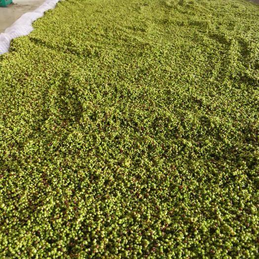 吉林省通化市通化县 出售大叶芹籽