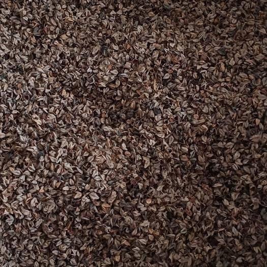 临汾霍州市荞麦壳
