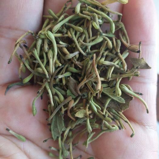 呼和浩特回民區 大量出售農戶自摘無污染無硫金銀花,誠信第一,量大優惠