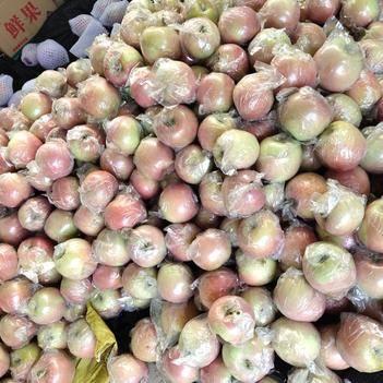 红富士苹果 陕西红富士上市,膜袋,脆甜,水分足,专业电商,微商一件代发