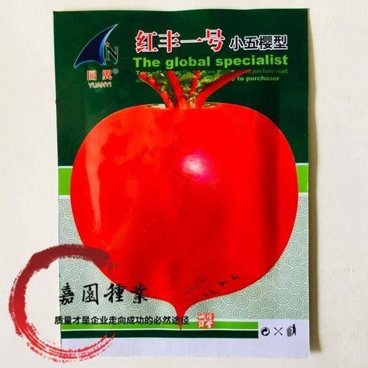成都锦江区樱桃萝卜种子 红丰一号小五樱种子包邮