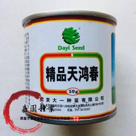 成都锦江区白萝卜种子 精品天鸿春种子包邮